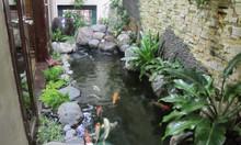 Chuyên thiết kế thi công bể cá koi Nhật