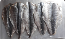 [TPHCM] Cung cấp cá thu ảo 1 nắng với giá sỉ tốt