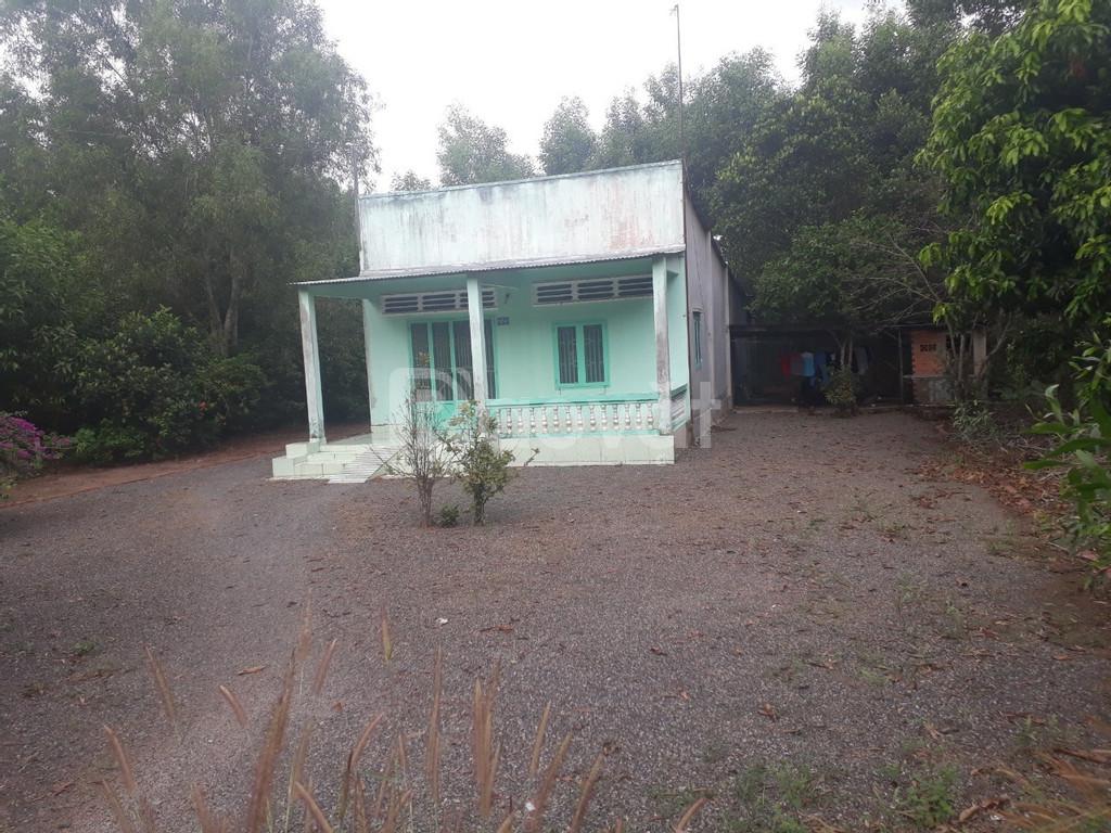 Chủ nhà có mảnh đất quy hoạch đất ở nông thôn cần bán