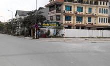 Bán đất biệt thự khu đấu giá Lệ Mật, phường Việt Hưng 38tr/m2