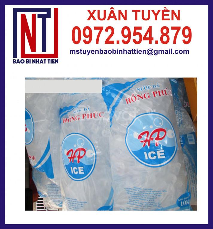 Chuyên sản xuất túi đựng nước đá