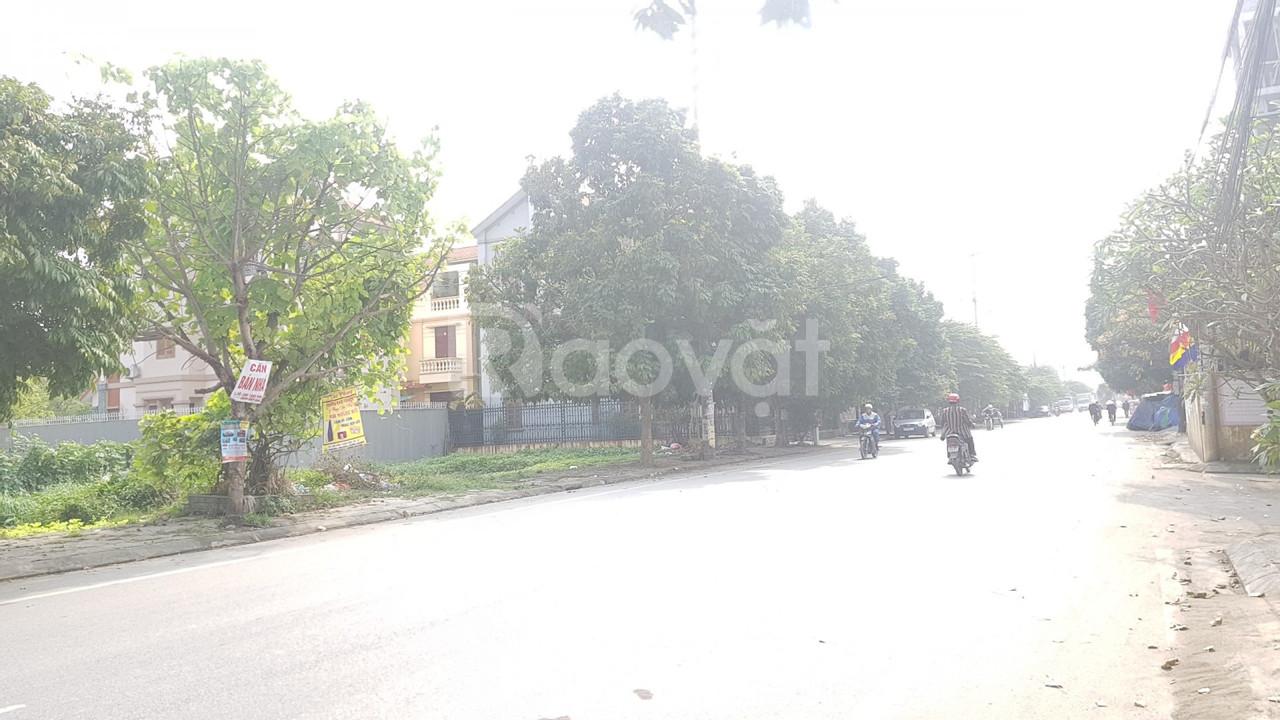 Đất mặt đường Chùa Nhèo- An Đồng, Hải Phòng