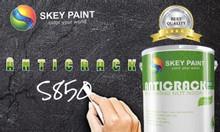 Anti Crack S850 sơn ngoại thất skey paint