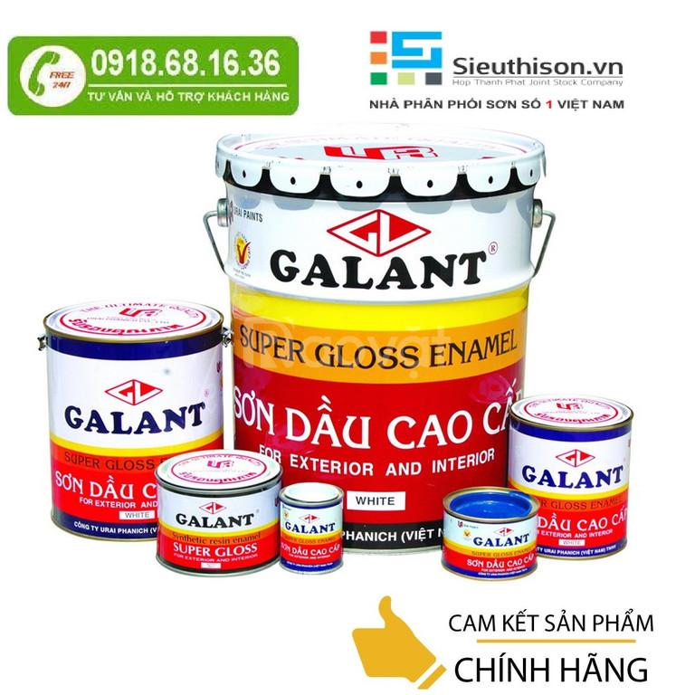 Mua sơn dầu galant tại Tây Ninh