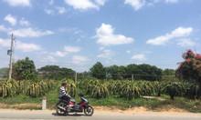 Bán đất nền 300m2 khu vực ngoài Phan Thiết, Hàm Thuận Bắc, giá rẻ