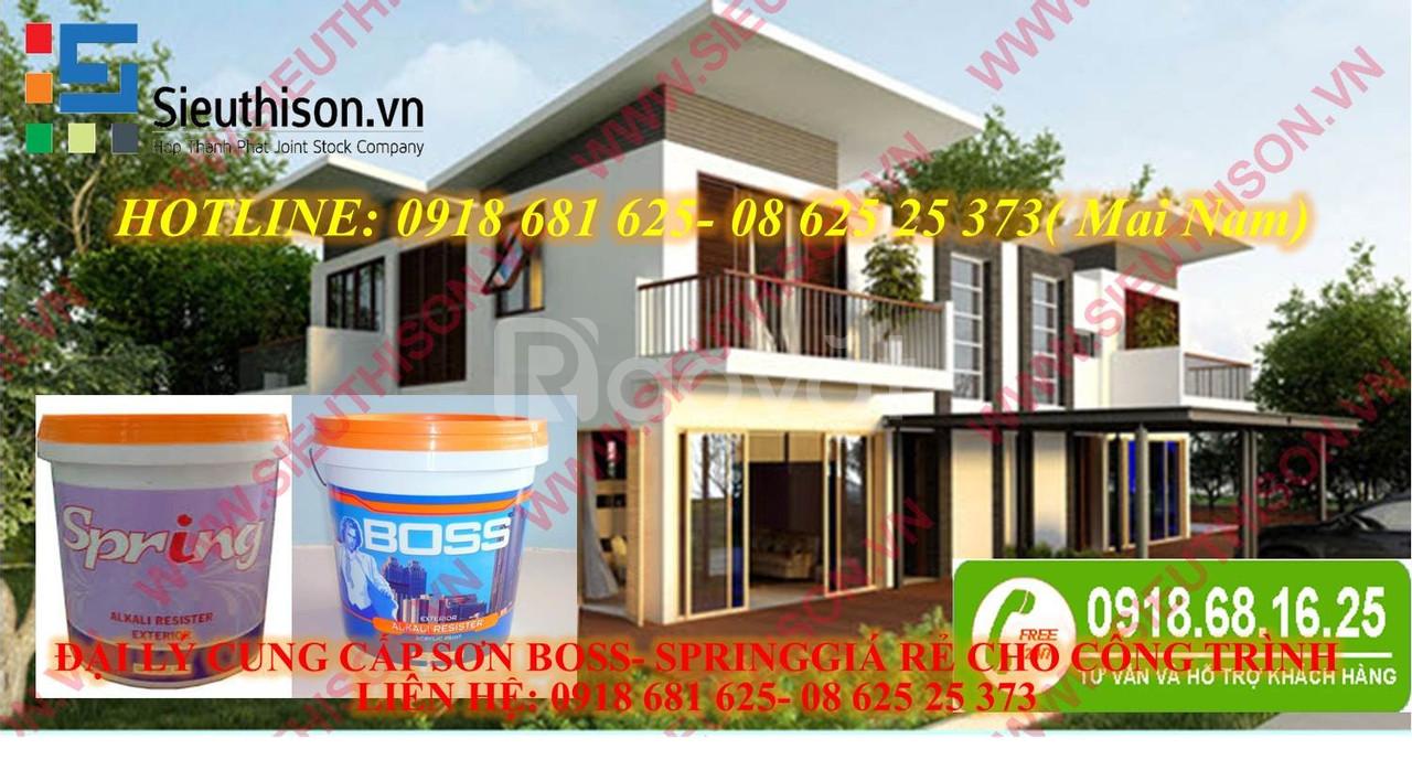 Chuyên phân phối sơn nước boss clean Maximum thùng 18l