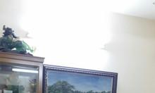 Cho thuê căn hộ lầu cao, view mát, đẹp, nhà sạch sẽ tại quận 2