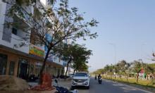 Dự án Golden Hills Tây Bắc Đà Nẵng mở bán trục Shophouse Golden