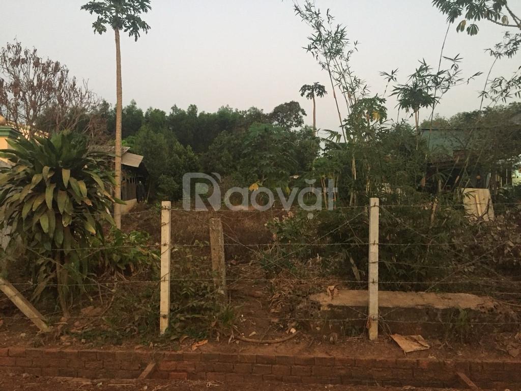 Bán đất ở nông thôn chỉ 2.3 triệu/m2