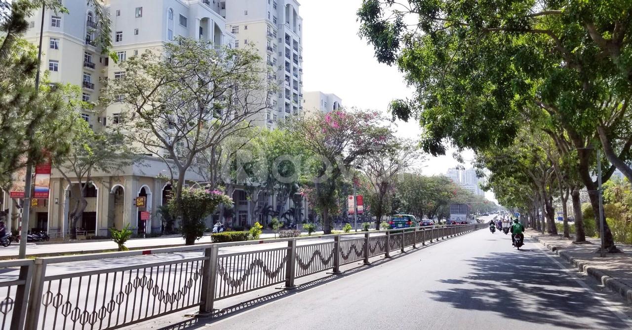 Căn hộ mặt tiền Nguyễn Lương Bằng quận 7 - Giá 24 triệu/m2