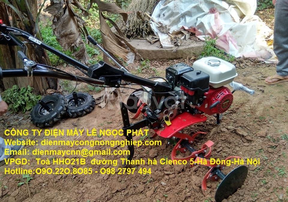 Đại lý máy xới đất Honda GX200 Thái Lan xịn rẻ Hà Nội