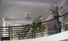 Bán nhà chính chủ Dương Quảng Hàm P6, Gò Vấp rộng 9m