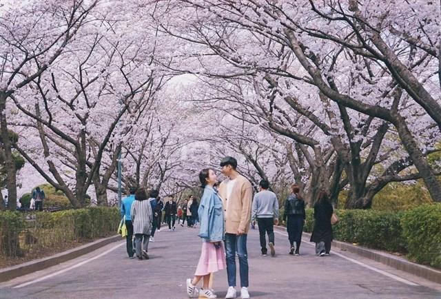 Thủ tục xin visa thăm thân Hàn Quốc