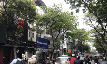 Chính chủ bán nhà mặt phố Lê Duẩn 500m2, giá 148 tỷ