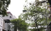 Chính chủ bán nhà mặt phố Doãn Kế Thiện 100m2x4T, giá 16 tỷ (ngã tư)