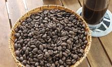 Cà phê hạt rang mộc cung cấp giá sỉ tại Hồ Chí Minh