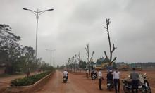Tên dự án khu đô thị Park Hill Thành Công
