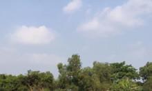 Đất 5x12 giá 250 triệu huyện Hóc Môn