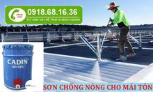 Đại lí chuyên bán sơn chống nóng mái tôn cho nhà xưởng tại Vũng Tàu