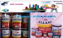 Đại lý sơn dầu Galant giá rẻ tại miền Tây