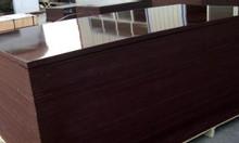 Ván ép phủ phim, ván gỗ chịu nước màu nâu đen