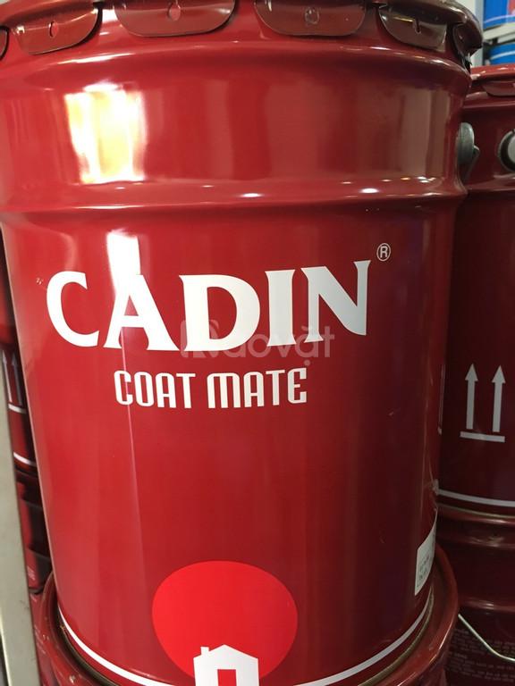 Tuyển đại lý cung cấp sơn chống rỉ đỏ Cadin chiết khấu cao, giá tốt