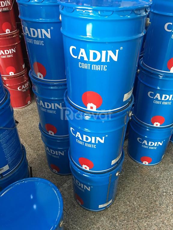Tìm đối tác phân phối sơn kẽm đa năng Cadin màu đỏ 344 giá rẻ