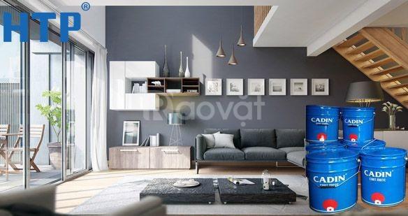 Chuyên bán sơn dầu gốc nước cho đồ nội thất giá rẻ chất lượng