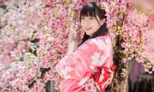 Visa vĩnh trú Nhật Bản