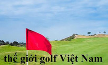 Lá cờ golf vải có cán nhựa LC34