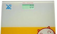 Cân sức khỏe FBD 150kg Mức Cân : 150kg x 100kg