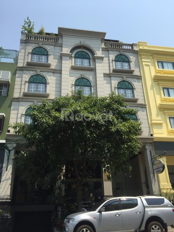 Cho thuê liền tay khách sạn có 25 phòng khu Hưng Phước, Phú Mỹ Hưng