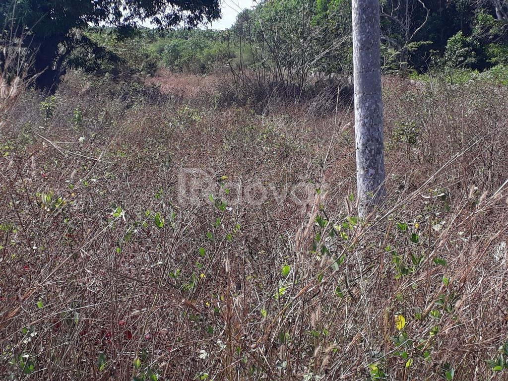 Bán đất Long Phước, Long Thành, kế bên Vineco 450 ha, 613 m2