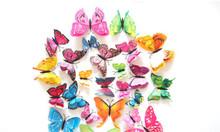Đinh 3 chân treo khung, bướm 3d dán trang trí