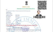 Làm Visa Ấn Độ Online loại 1 năm nhiều lần