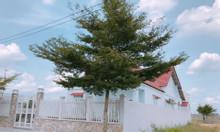 Bán đất đường Trần Văn Giàu, Bình Chánh, đầu tư sinh lời cao, SHR
