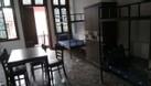 Phòng trọ home Stay -Lớp học tiếng anh nội trú (ảnh 1)