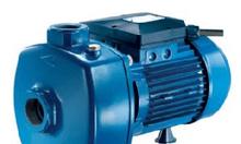 Báo giá máy bơm nước dân dụng MB200, CD67