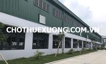 Cho thuê gấp nhà xưởng tại Quán Gỏi Bình Giang Hải Dương DT 1602m2