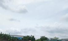 Đất đối diện khu công nghiệp Hòa Bình, Thủ Thừa, Long An, sổ hồng riên