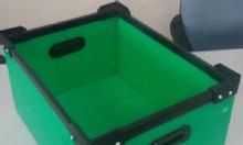 Thùng nhựa carton danpla sản xuất theo yêu cầu
