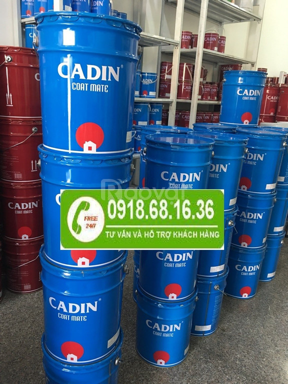 Bán sơn epoxy Cadin chính hãng tại Quãng Nam, chiết khấu cao
