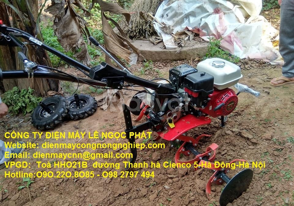 Làm sạch cỏ xới tơi đất với máy làm đất mini Honda GX200 Thái Lan