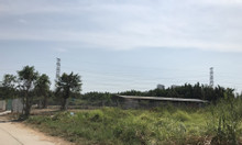Đất thổ vườn 1400m2, Phạm Hữu Lầu, Nhà Bè giá bao đầu tư