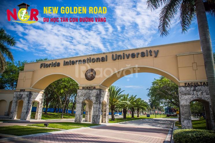 Học bổng trị giá $36.000/4 năm tại Công ty New Golden Road