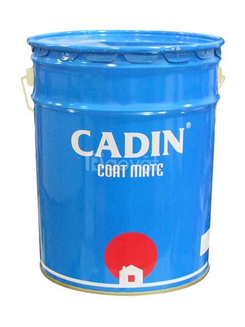 Đại lý cung cấp sơn dầu Cadin giá rẻ