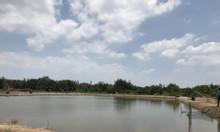 Chính chủ bán nóng mảnh đất lúa quĩ đất lớn 7000m2, Hiệp Phước