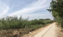 Bán đất thổ vườn 1400m2 Phạm Hữu Lầu, Nhà Bè, giá đầu tư tốt