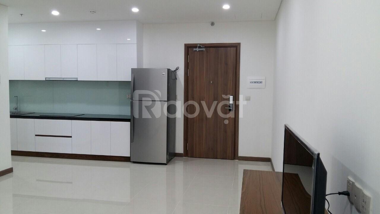 Cho thuê căn hộ HADO 1PN đường 3/2 Q10 đủ nội thất
