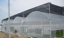 Lưới chắn côn trùng hà nội, lưới chắn côn trùng giá rẻ